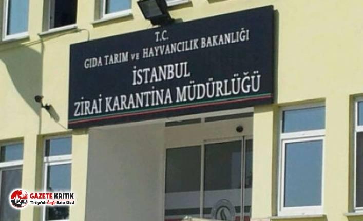 Kamu kurumu binası  Bilal Erdoğan'ın vakfına tahsis edildi