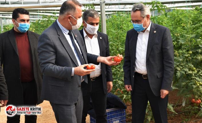 Nusret Bayar: Yerli tohum üreticisi desteklenmiyor