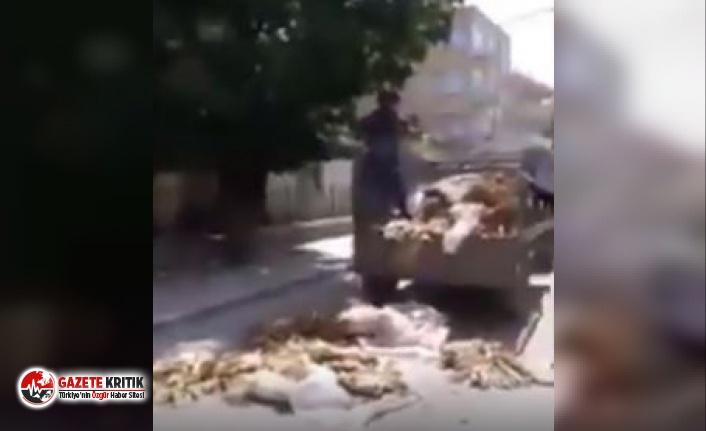 """Ziraat Bankası'na Serdar Ortaç tepkisi: """"Türkiye..."""