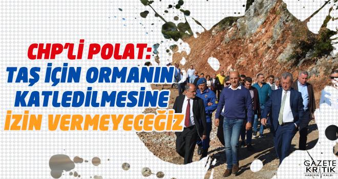 CHP'Lİ POLAT: TAŞ İÇİN ORMANIN KATLEDİLMESİNE...