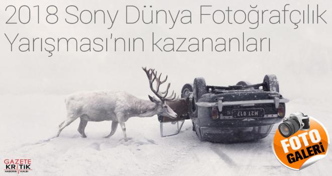 2018 Sony Dünya Fotoğrafçılık Yarışması'nın...