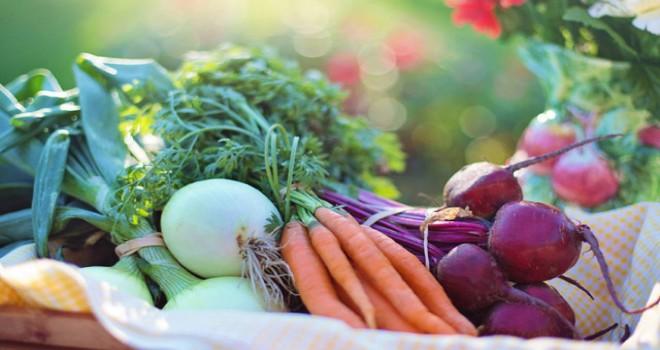 Çözülen gıdalar tekrar dondurulmamalı