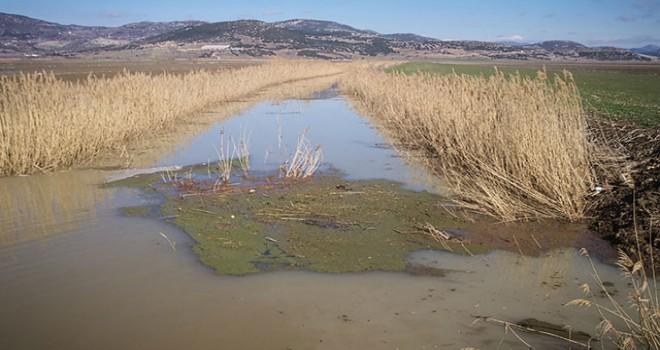 Kestel Ovası'nda 30 bin dekar tarım arazisi su altında...