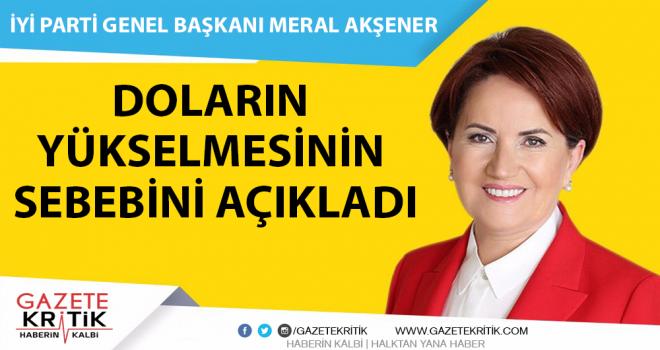 İyi Parti Genel Başkanı Meral Akşener, Doların yükselmesinin sebebini açıkladı