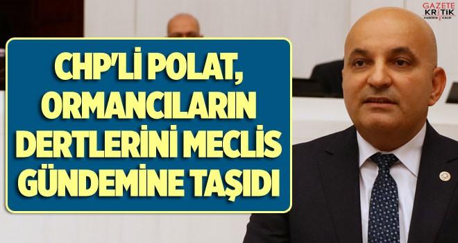 CHP'Lİ POLAT, ORMANCILARIN DERTLERİNİ MECLİS GÜNDEMİNE...