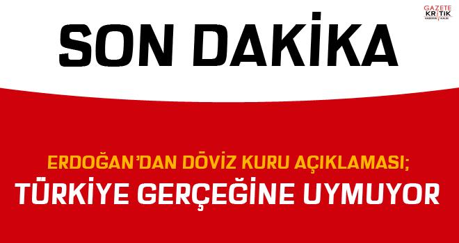 Erdoğan'dan döviz kuru açıklaması