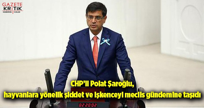 CHP'li Şaroğlu, hayvanlara yönelik şiddet ve işkenceyi...