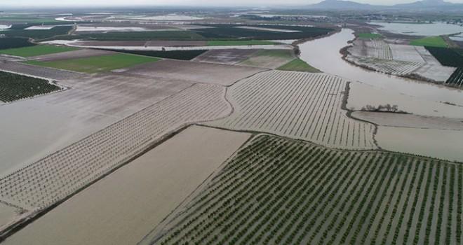 Adana'da yağmurla birlikte tarım arazileri sular...
