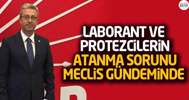 LABORANT VE PROTEZCİLERİN ATANMA SORUNU MECLİS...