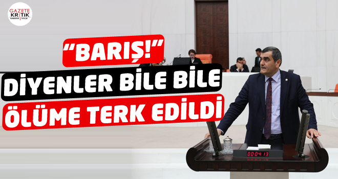 CHP'li Ali Şeker Meclis Kürsüsünden Sordu:Barıştan,...