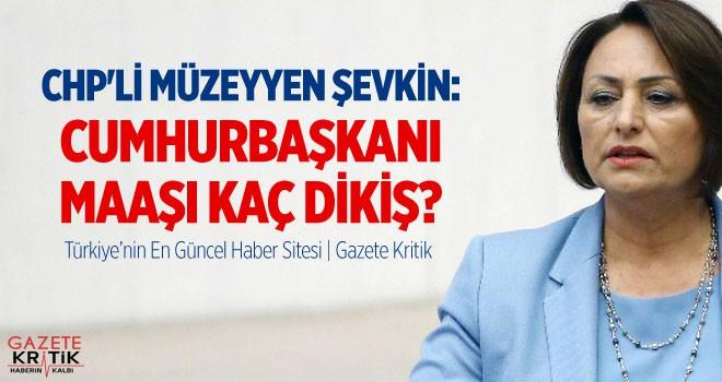 CHP'Lİ MÜZEYYEN ŞEVKİN: CUMHURBAŞKANI MAAŞI...