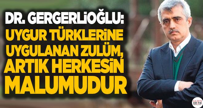 Dr. Gergerlioğlu: Uygur Türklerine uygulanan zulüm,...