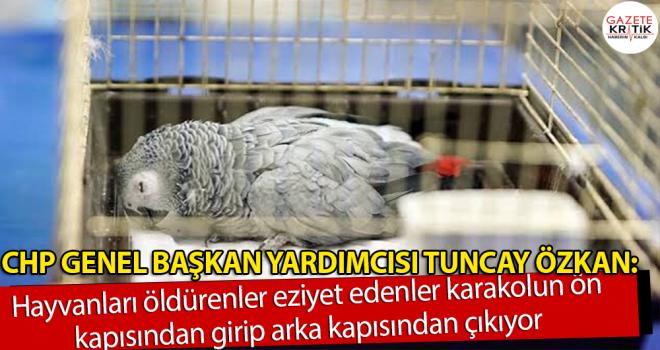 Tuncay Özkan:AKP tarafından söz verilip çıkarılmayan...
