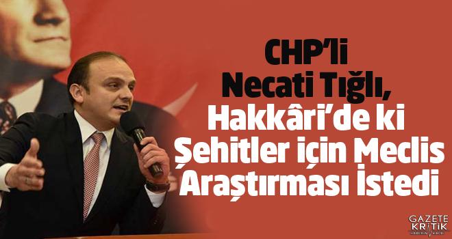 CHP'li Necati Tığlı, Hakkâri'de ki Şehitler için...