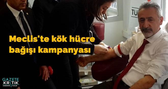 Meclis'te kök hücre bağışı kampanyası
