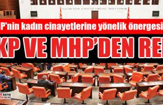 CHP'nin kadın cinayetlerine yönelik önergesi...