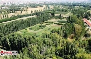 Atatürk Orman Çiftiği'nin 70 dönümü kiraya...