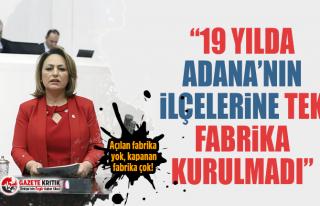 CHP'li Müzeyyen Şevkin:Açılan fabrika yok,...