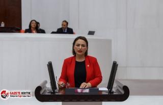 "CHP'li Şevkin: ""Adana-Tarsus-Mersin tren seferleri..."