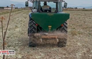 Çiftçiye 'müjde' olan gübre desteği,...