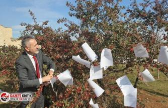 CHP'li Adıgüzel: Cevapsız sorular Meclis'te ağaç oldu