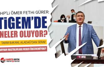 """CHP'li Gürer: """"Kamuda hayvan sağlığı sorunsa  besici ne yapsın?"""""""