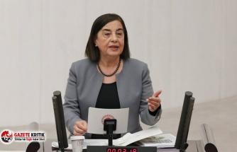 CHP'li Süllü: İklim krizinde atalet içindeyiz