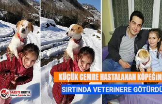 Küçük Cemre hastalanan köpeğini sırtında veterinere götürdü